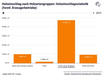 Holzeinschlag nach Holzartengruppen: Holzeinschlagsstatistik (forstl. Erzeugerbetriebe)