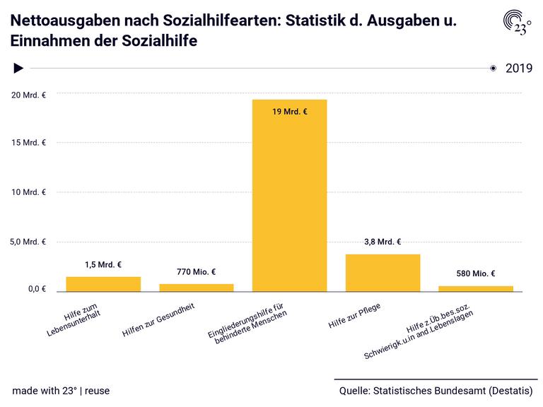 Nettoausgaben nach Sozialhilfearten: Statistik d. Ausgaben u. Einnahmen der Sozialhilfe