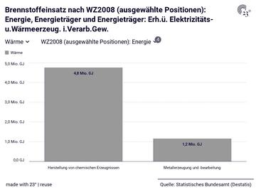 Brennstoffeinsatz nach WZ2008 (ausgewählte Positionen): Energie, Energieträger und Energieträger: Erh.ü. Elektrizitäts- u.Wärmeerzeug. i.Verarb.Gew.