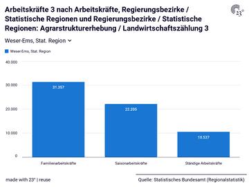 Arbeitskräfte 3 nach Arbeitskräfte, Regierungsbezirke / Statistische Regionen und Regierungsbezirke / Statistische Regionen: Agrarstrukturerhebung / Landwirtschaftszählung 3