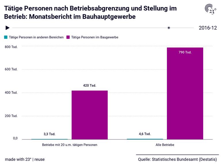 Tätige Personen nach Betriebsabgrenzung und Stellung im Betrieb: Monatsbericht im Bauhauptgewerbe