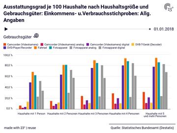 Ausstattungsgrad je 100 Haushalte nach Haushaltsgröße und Gebrauchsgüter: Einkommens- u.Verbrauchsstichproben: Allg. Angaben