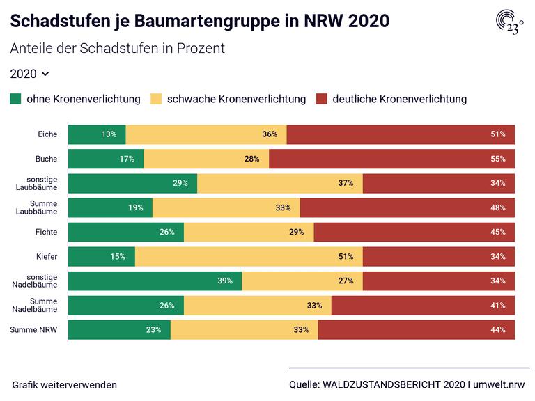 Schadstufen je Baumartengruppe in NRW 2020