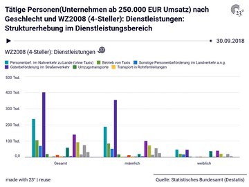 Tätige Personen(Unternehmen ab 250.000 EUR Umsatz) nach Geschlecht und WZ2008 (4-Steller): Dienstleistungen: Strukturerhebung im Dienstleistungsbereich