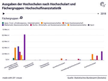 Ausgaben der Hochschulen nach Hochschulart und Fächergruppen: Hochschulfinanzstatistik