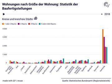 Wohnungen nach Größe der Wohnung: Statistik der Baufertigstellungen