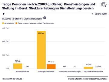 Tätige Personen nach WZ2003 (3-Steller): Dienstleistungen und Stellung im Beruf: Strukturerhebung im Dienstleistungsbereich