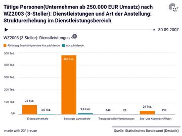 Tätige Personen(Unternehmen ab 250.000 EUR Umsatz) nach WZ2003 (3-Steller): Dienstleistungen und Art der Anstellung: Strukturerhebung im Dienstleistungsbereich