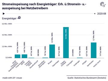 Stromeinspeisung nach Energieträger: Erh. ü.Stromein- u.-ausspeisung bei Netzbetreibern