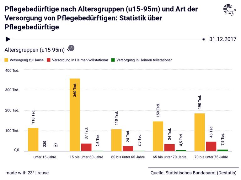 Pflegebedürftige nach Altersgruppen (u15-95m) und Art der Versorgung von Pflegebedürftigen: Statistik über Pflegebedürftige