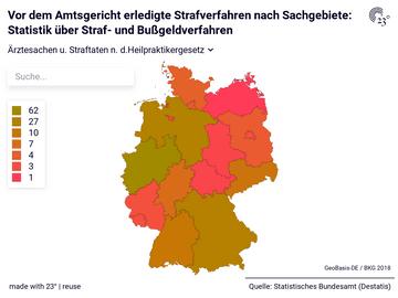 Vor dem Amtsgericht erledigte Strafverfahren nach Sachgebiete: Statistik über Straf- und Bußgeldverfahren