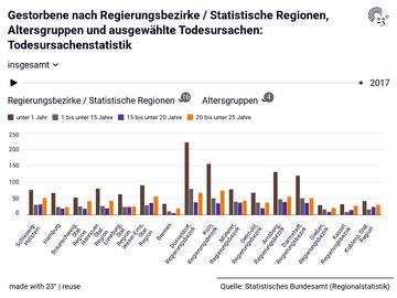 Gestorbene nach Regierungsbezirke / Statistische Regionen, Altersgruppen und ausgewählte Todesursachen: Todesursachenstatistik