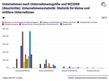 Unternehmen nach Unternehmensgröße und WZ2008 (Abschnitte): Unternehmensstatistik: Statistik für kleine und mittlere Unternehmen