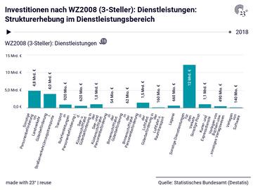 Investitionen nach WZ2008 (3-Steller): Dienstleistungen: Strukturerhebung im Dienstleistungsbereich