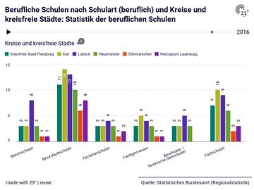 Berufliche Schulen nach Schulart (beruflich) und Kreise und kreisfreie Städte: Statistik der beruflichen Schulen