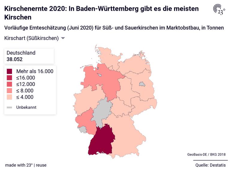 Kirschenernte 2020: In Baden-Württemberg gibt es die meisten Kirschen