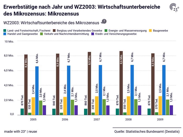 Erwerbstätige nach Jahr und WZ2003: Wirtschaftsunterbereiche des Mikrozensus: Mikrozensus
