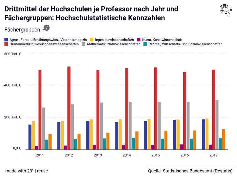 Drittmittel der Hochschulen je Professor nach Jahr und Fächergruppen: Hochschulstatistische Kennzahlen