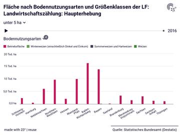 Fläche nach Bodennutzungsarten und Größenklassen der LF: Landwirtschaftszählung: Haupterhebung
