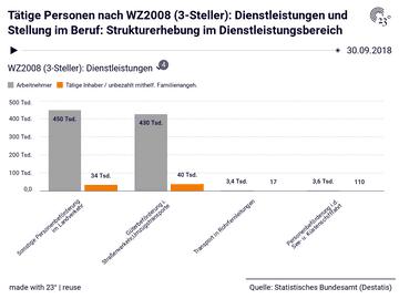 Tätige Personen nach WZ2008 (3-Steller): Dienstleistungen und Stellung im Beruf: Strukturerhebung im Dienstleistungsbereich