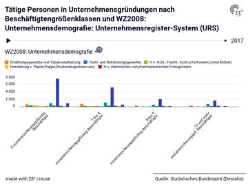 Tätige Personen in Unternehmensgründungen nach Beschäftigtengrößenklassen und WZ2008: Unternehmensdemografie: Unternehmensregister-System (URS)