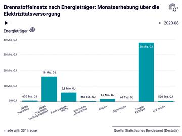 Brennstoffeinsatz nach Energieträger: Monatserhebung über die Elektrizitätsversorgung