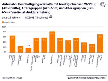 Anteil abh. Beschäftigungsverhältn.mit Niedriglohn nach WZ2008 (Abschnitte), Altersgruppen (u25-65m) und Altersgruppen (u25-65m): Verdienststrukturerhebung